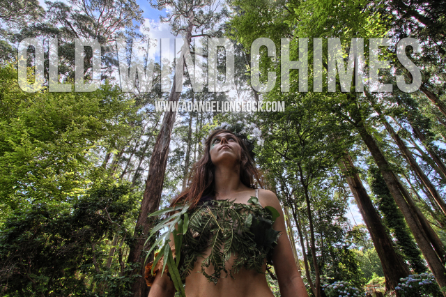 Old Wind Chimes Video Release